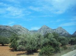 drumetii montante in Palma de Mallorca