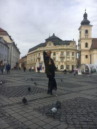 porumbei in Piata Mare din Sibiu
