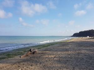 top plaje pustii in Bulgaria
