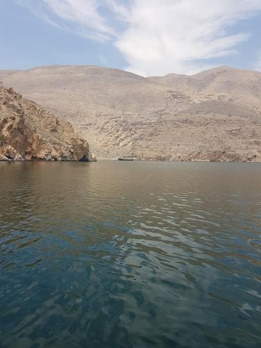 croaziera in Oman cu dhow barca traditionala