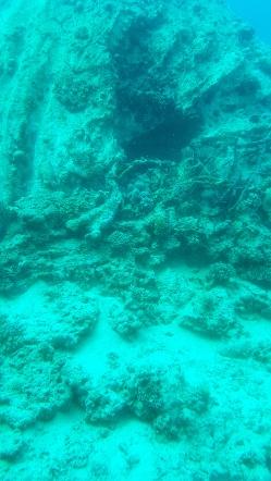 recif de corali Hurghada