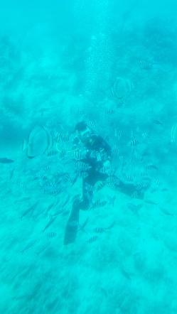 scubadiving in Hurghada