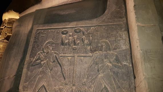 simbolurile Egiptului de Sus si de Jos - Floarea de Lotus si Floarea de Papirus