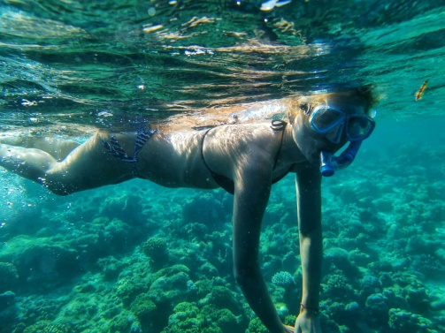 best experience in Maldives snorkeling