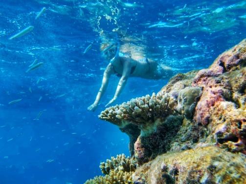 best place for snorkeling Maldives