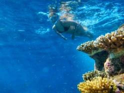 ce sa faci in Maldive snorkeling