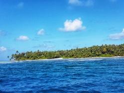 insula Dhiguarh de-a lunul careia traiesti rechinul balena in Maldive