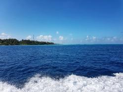 insule Malive