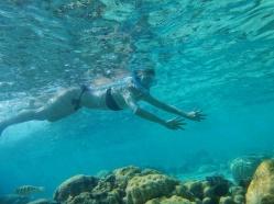 Maldives worlds best snorkeling destinations