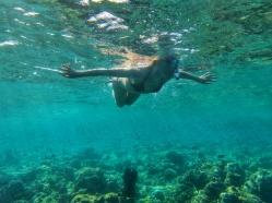 multitudinea de pesti din Oceanul Indian Maldive
