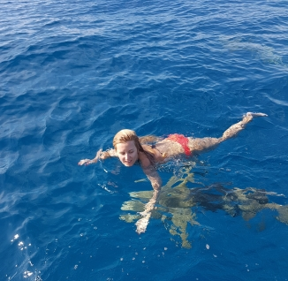 swimming with the nurse sharks in Maldives