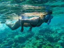top experience in Maldives snorkeling