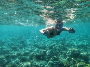 top experiente in Maldive snorkeling printe corali