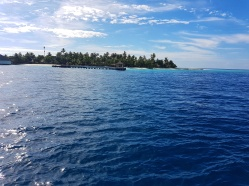 top insule in Maldive Dhigali