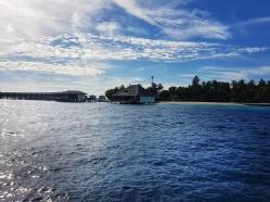 unde sa mergi in vacanta in Maldive inusla Dhigali unde poti inota cu rechinii