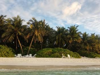 cei doi plamieri Fihalhohi Island Resort