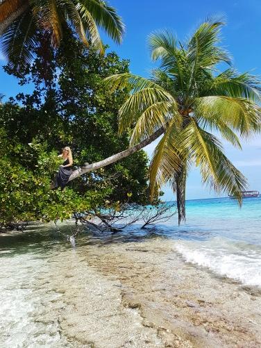 happy girl on a coconut tree in Maldives Fihalhohi Island Resort