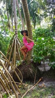 luxuriant vegetation Fihalhohi Island Resort