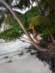 luxuriant vegetation in Maldives