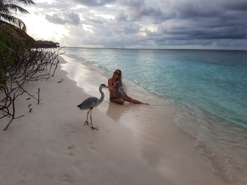 photoshooting with heron bird in Maldives