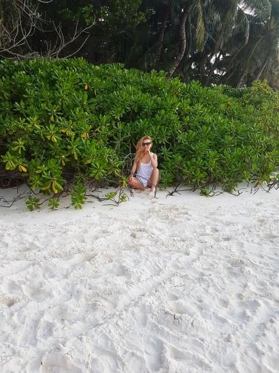 scaevola taccada Maldives