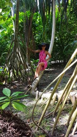 tropica forest Maldives