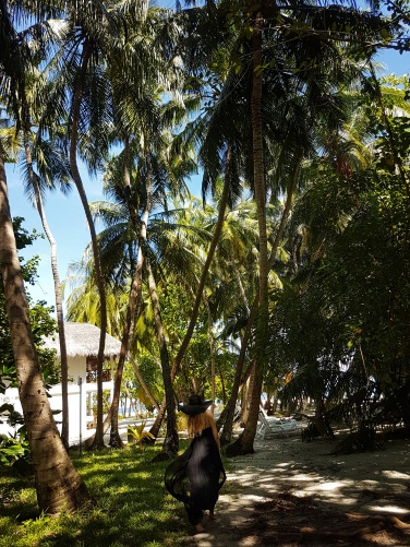 tropical forest Maldives